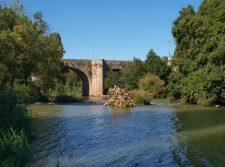 Puente sobre el río en Olivares de Duero