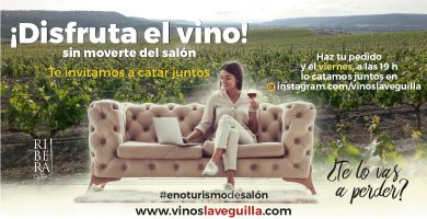 ¿Te apasiona el vino? Te proponemos practicar enoturismo de salón.